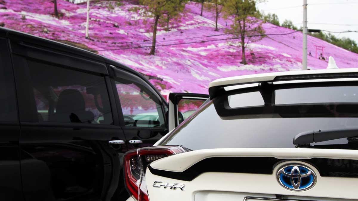 ひがしもこと芝桜公園駐車場