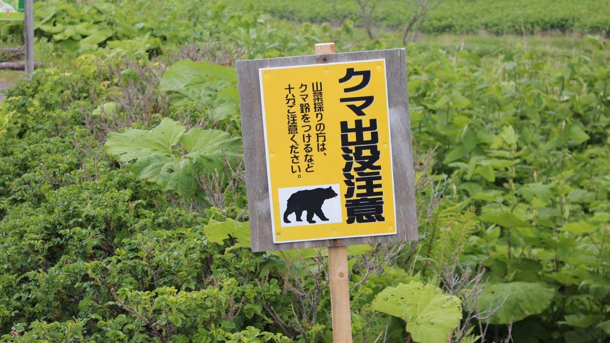 オムサロ遺跡公園・クマ出没注意看板
