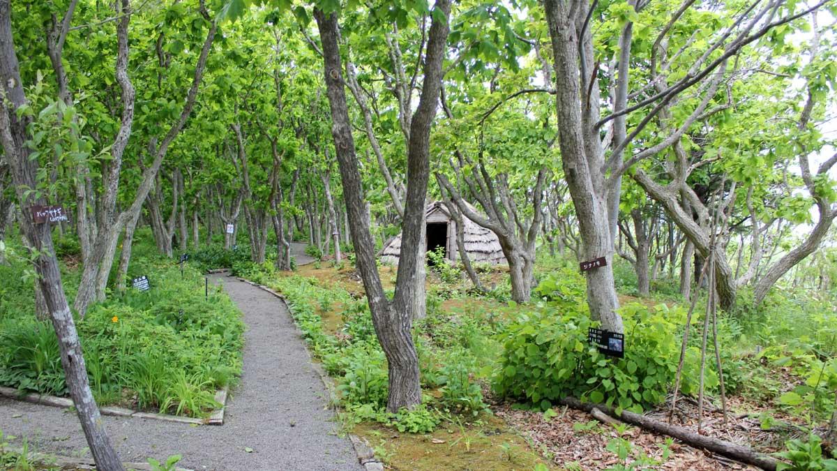 オムサロ遺跡公園内