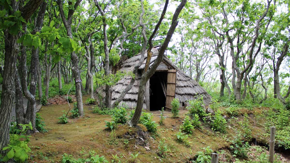 オムサロ遺跡公園・たて穴住居
