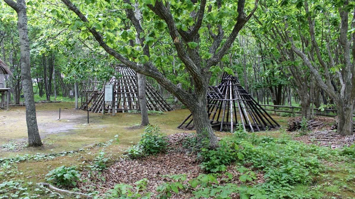 オムサロ遺跡公園・住居