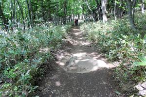 フレペの滝・遊歩道