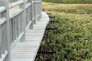 高架木道電気柵