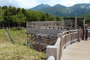 地上遊歩道から高架木道へは一方通行