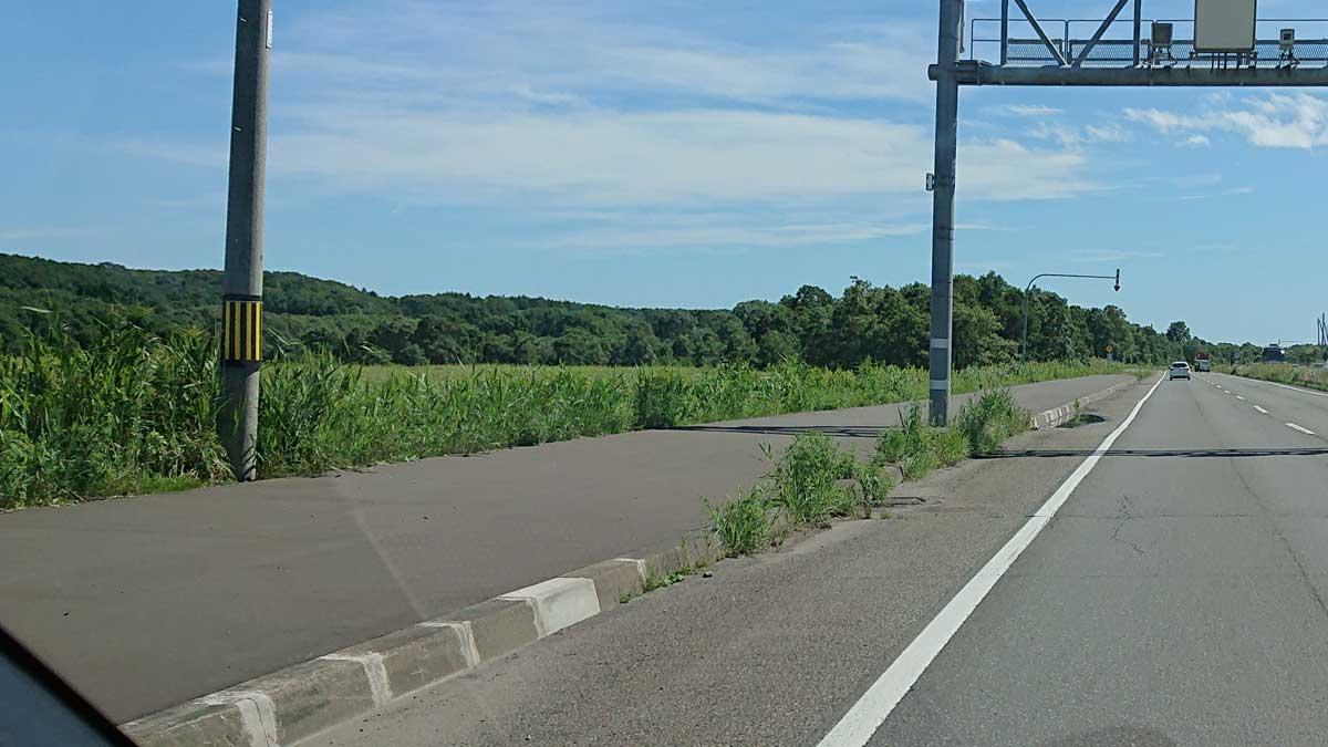 縁石(歩車道境界ブロック)には補修した跡が